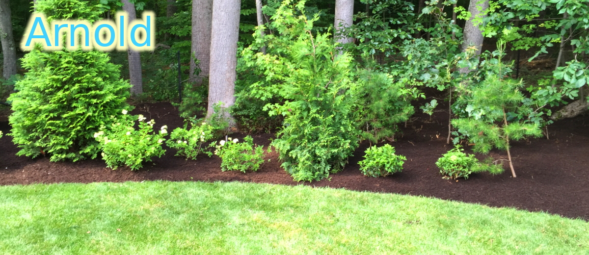 Arnold Landscaping and Lawn Care