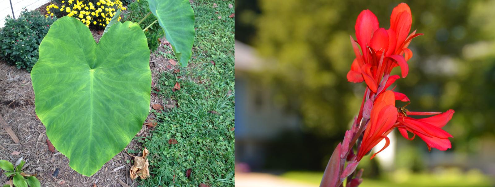 Landscaping Millersville 21108