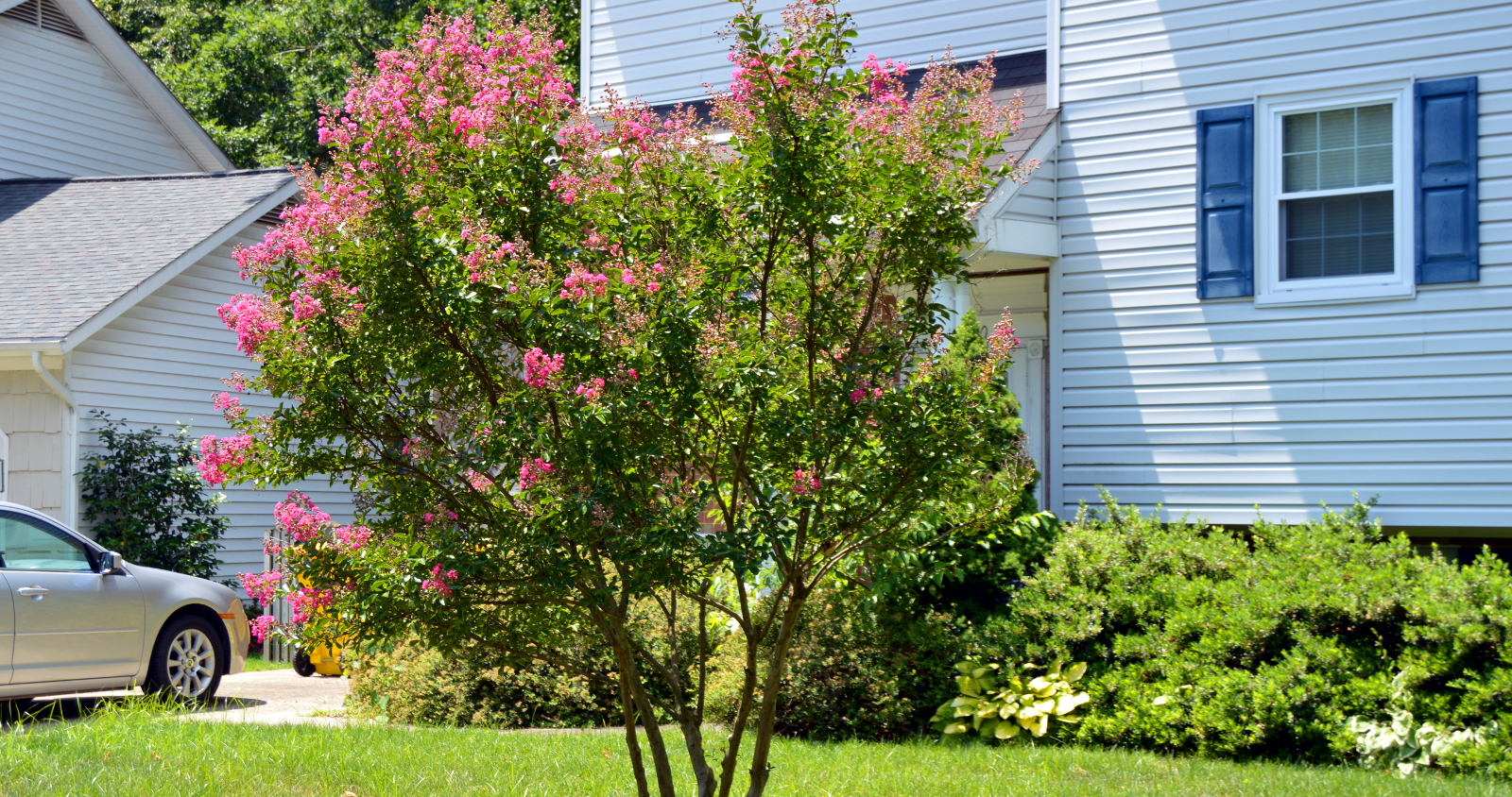 Landscapers Odenton MD